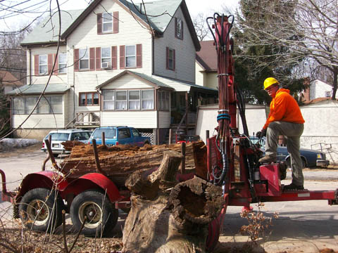 Kyle operating one of our log loaders