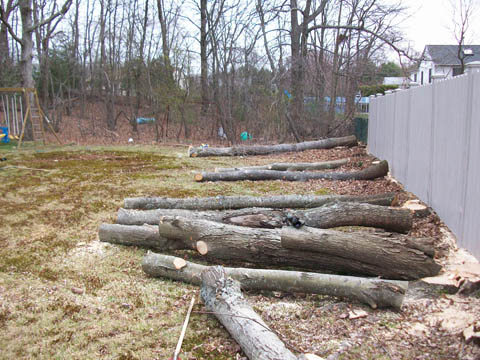 Logs at a job site - ready to be picked up by one of our log loaders