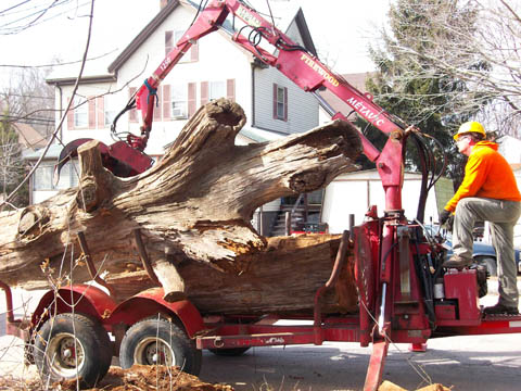 Some big wood being removed from a job